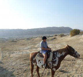 dead sea horseback riding